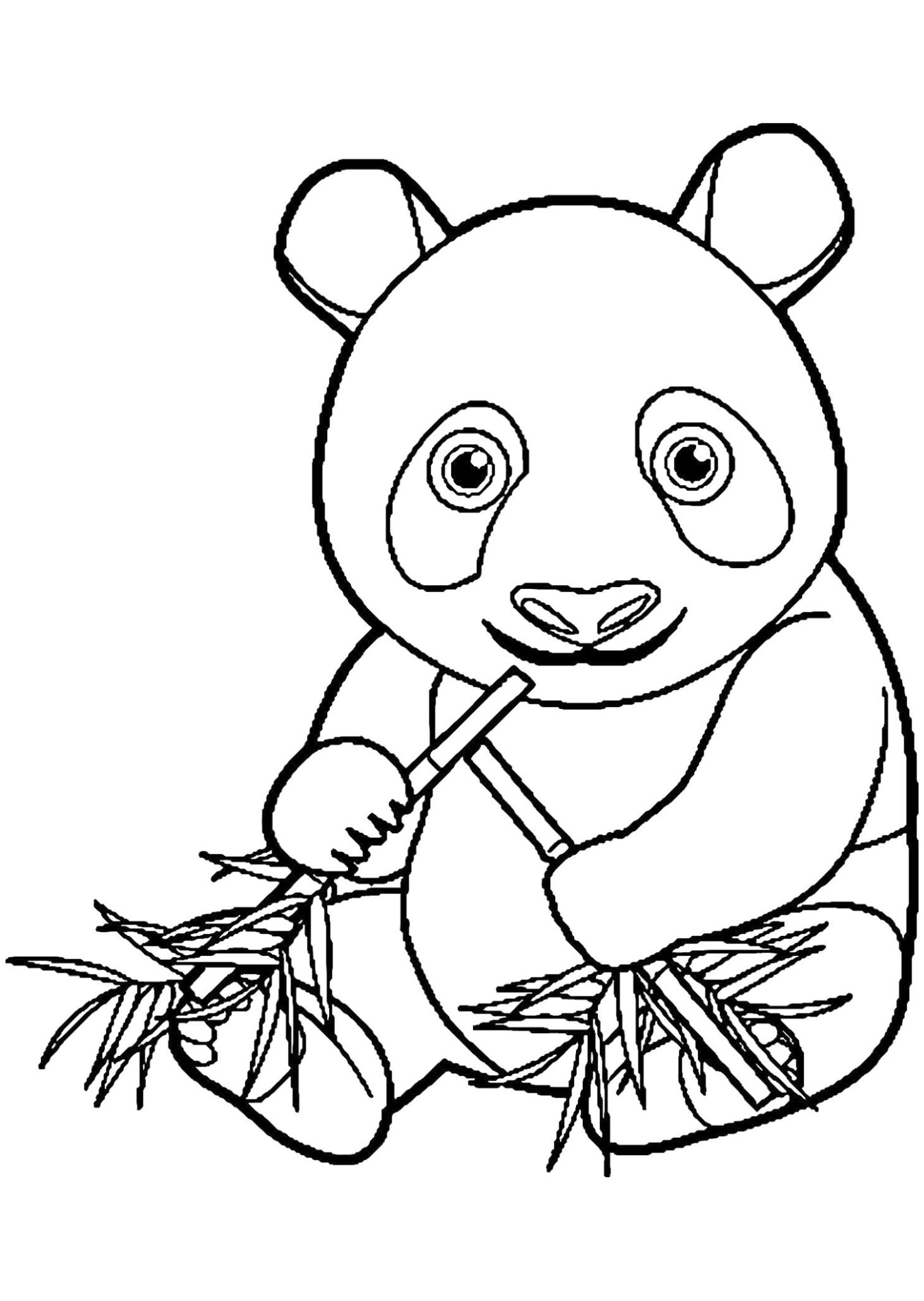 Combo Panda Coloring Pages