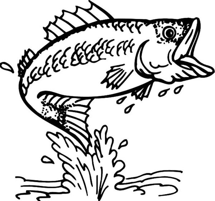 Adult Coloring Pages Fish