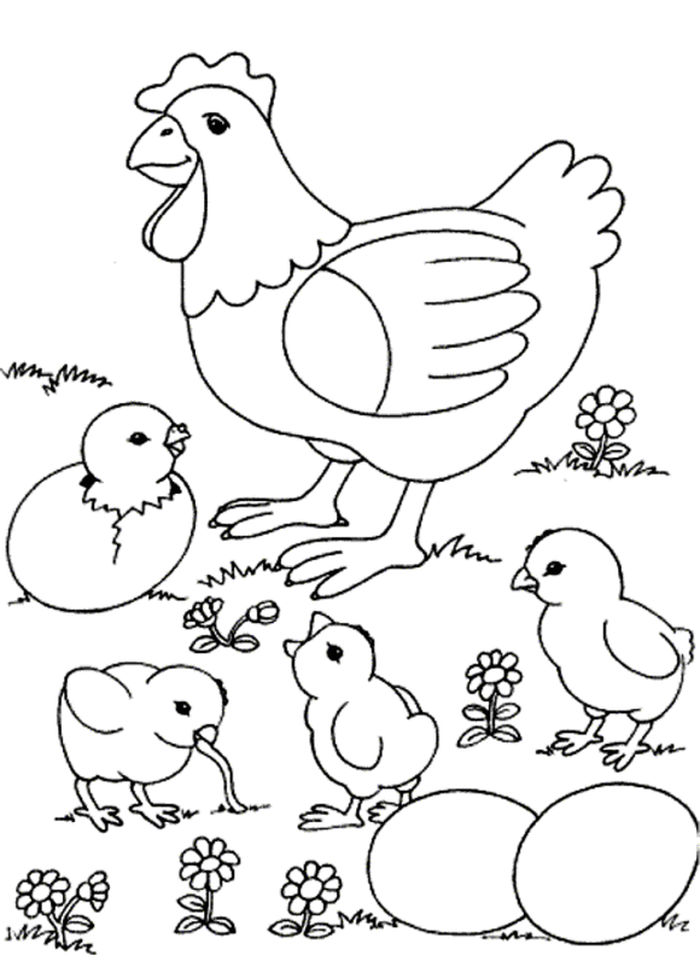 Alot Chicken Coloring Pages