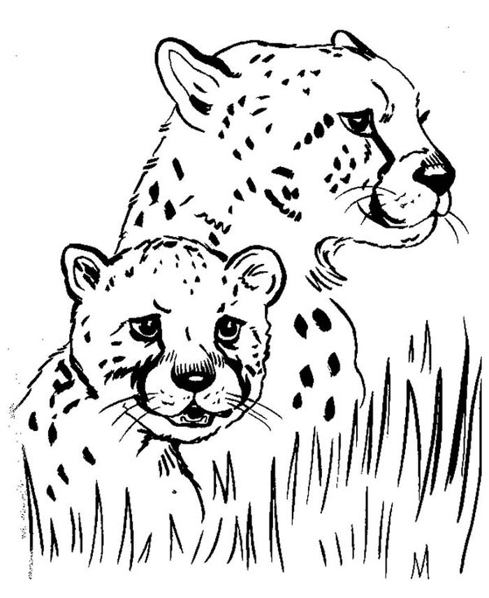 Cheetah Girls Coloring Pages