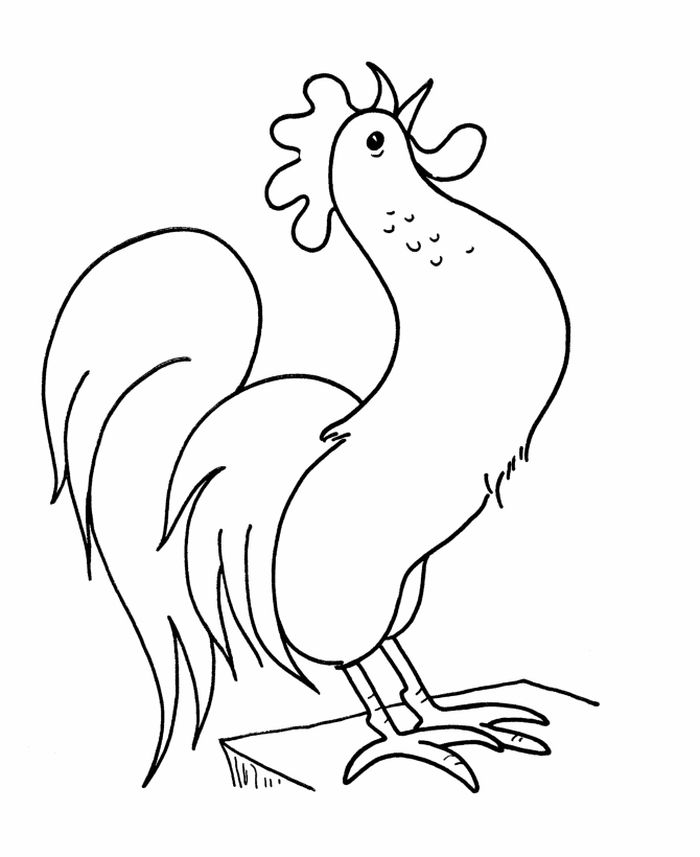 Chicken And Rooster Coloring Pages