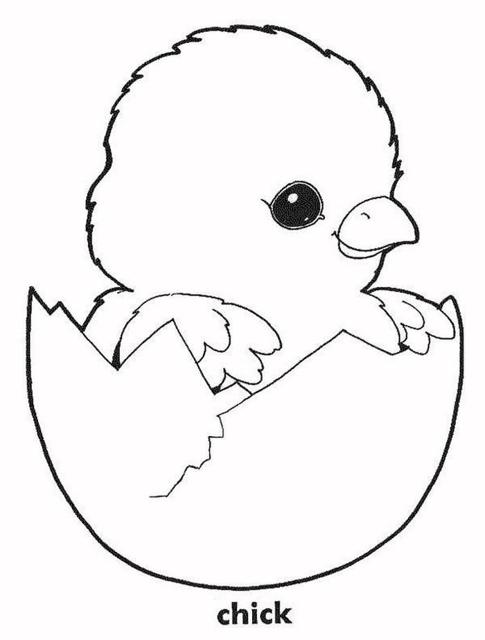 Chicken Hatching Coloring Pages