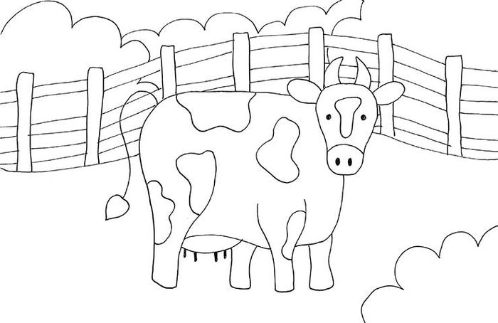 Coloring Cow Pages