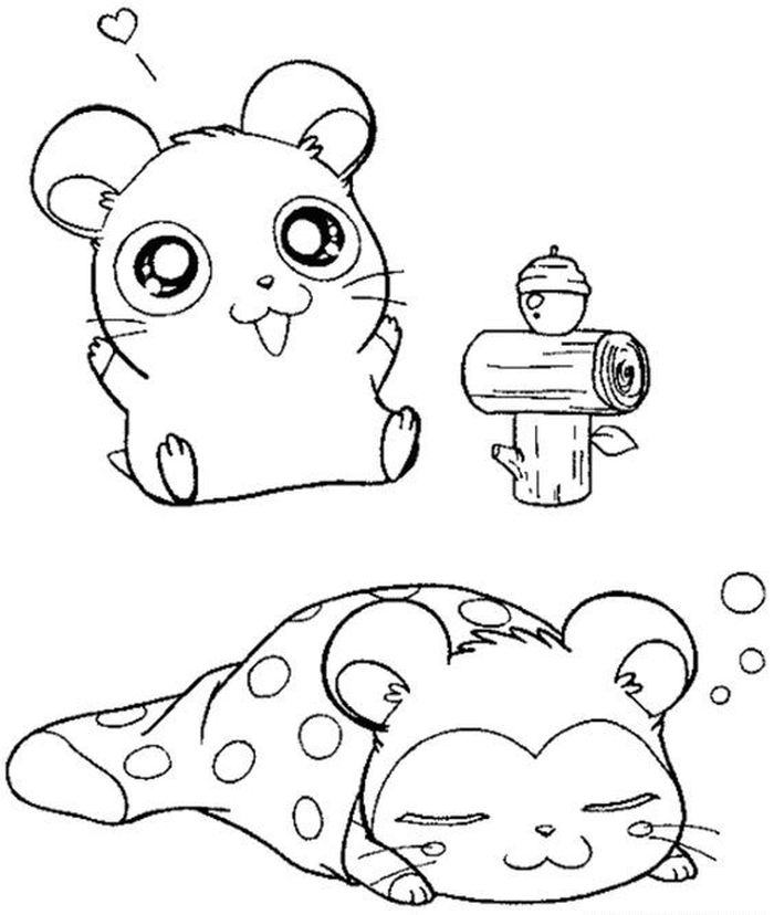 Coloring Hamster Printable Pages