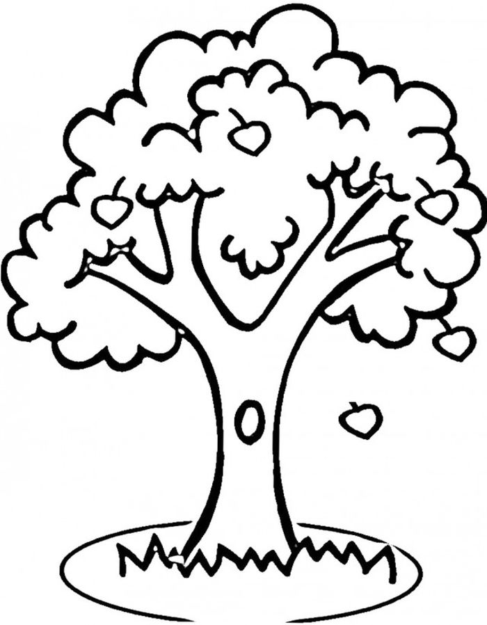 Coloring Pages Apple Trees