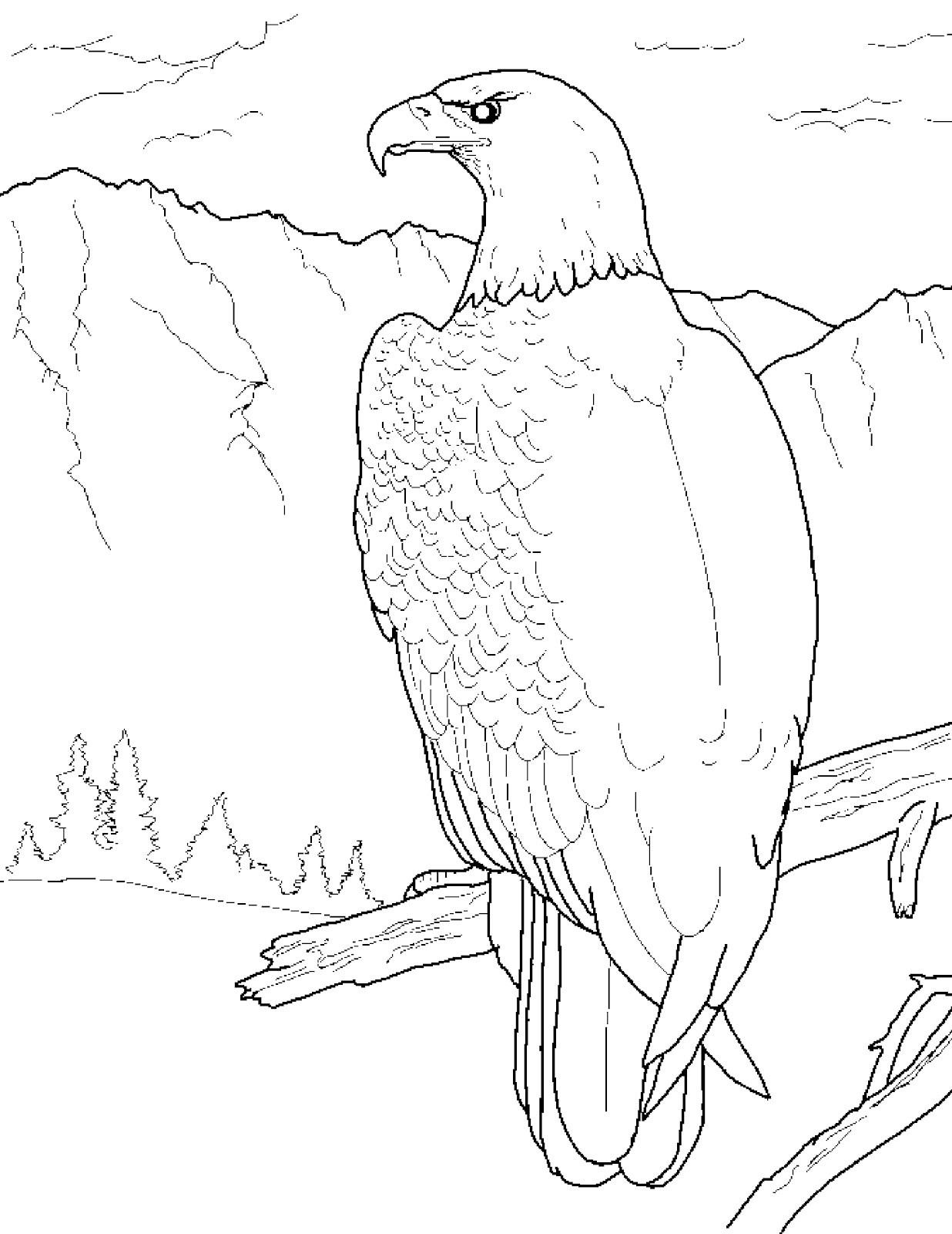 Coloring Pages Bald Eagle