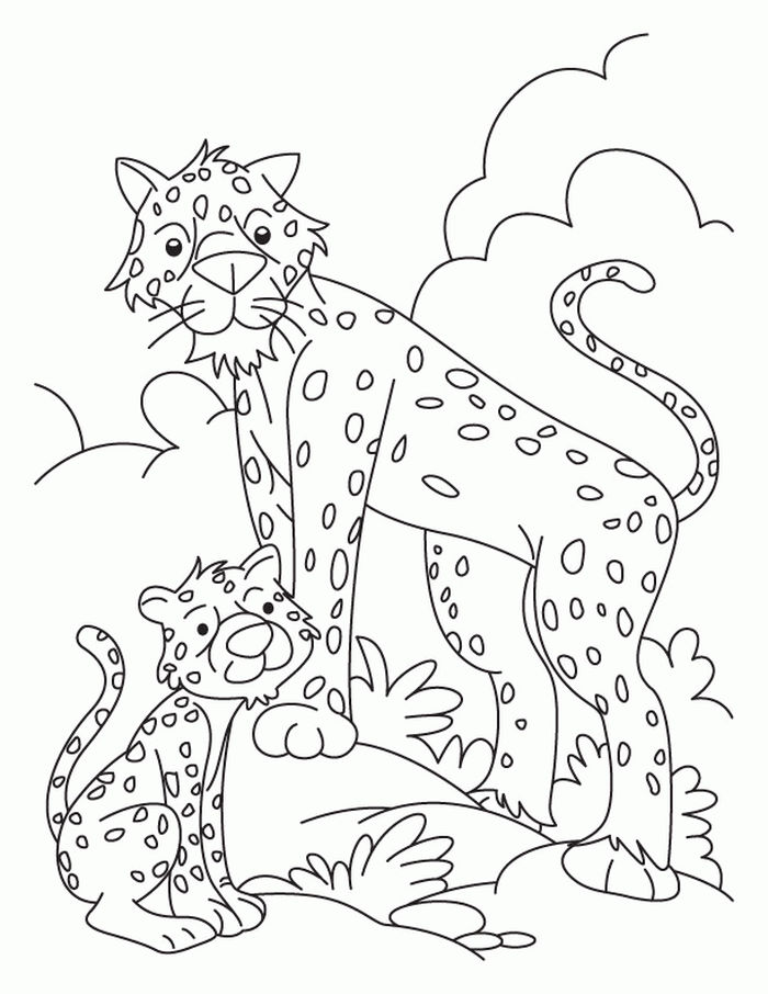 Coloring Pages Cheetah And Babies