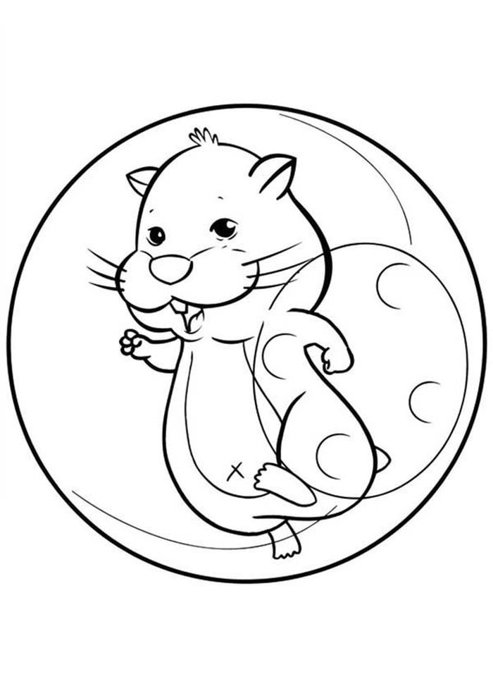 Coloring Pages For Kids Hamster