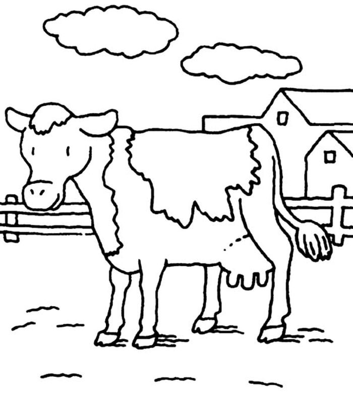Conic Projection Cattle Trails And Cow Towns Coloring Pages