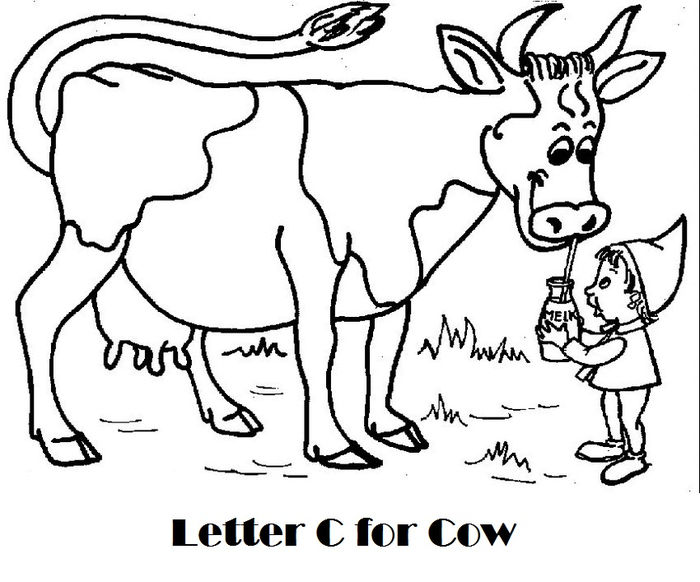 Cow Boyshoot Out Coloring Pages