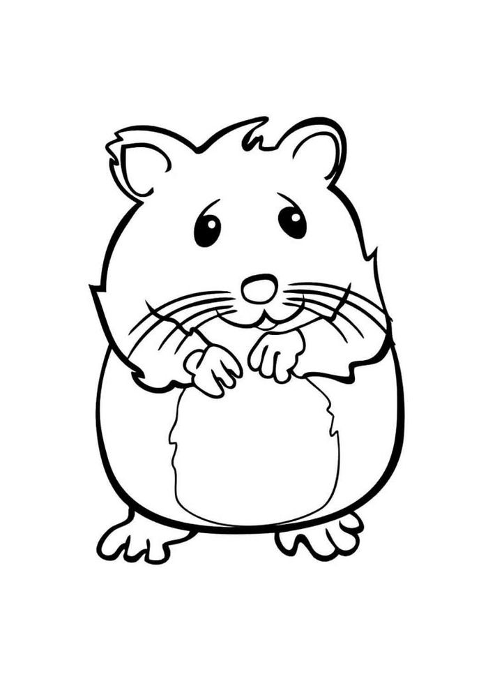 Cute Hamster Coloring Pages To Print