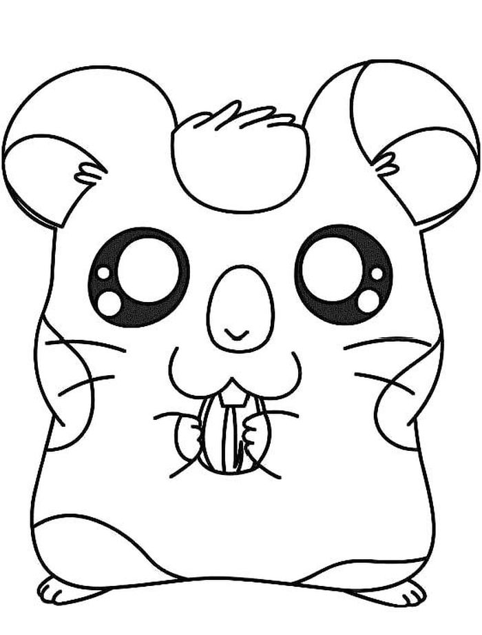 Cute Hamster Free Printable Coloring Pages