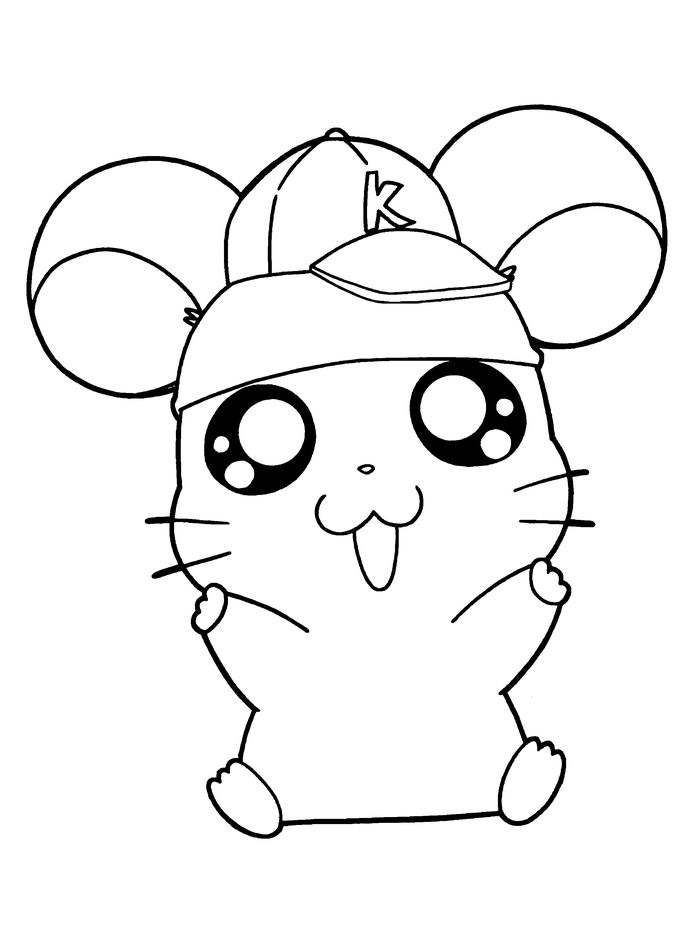 Cute Hamster With Hat Coloring Pages