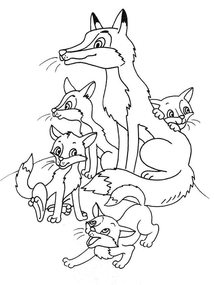 Detailed Fox Coloring Pages