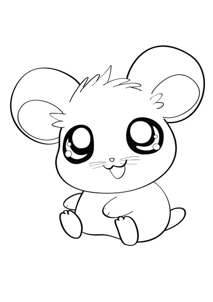 Dwarf Hamster Coloring Pages