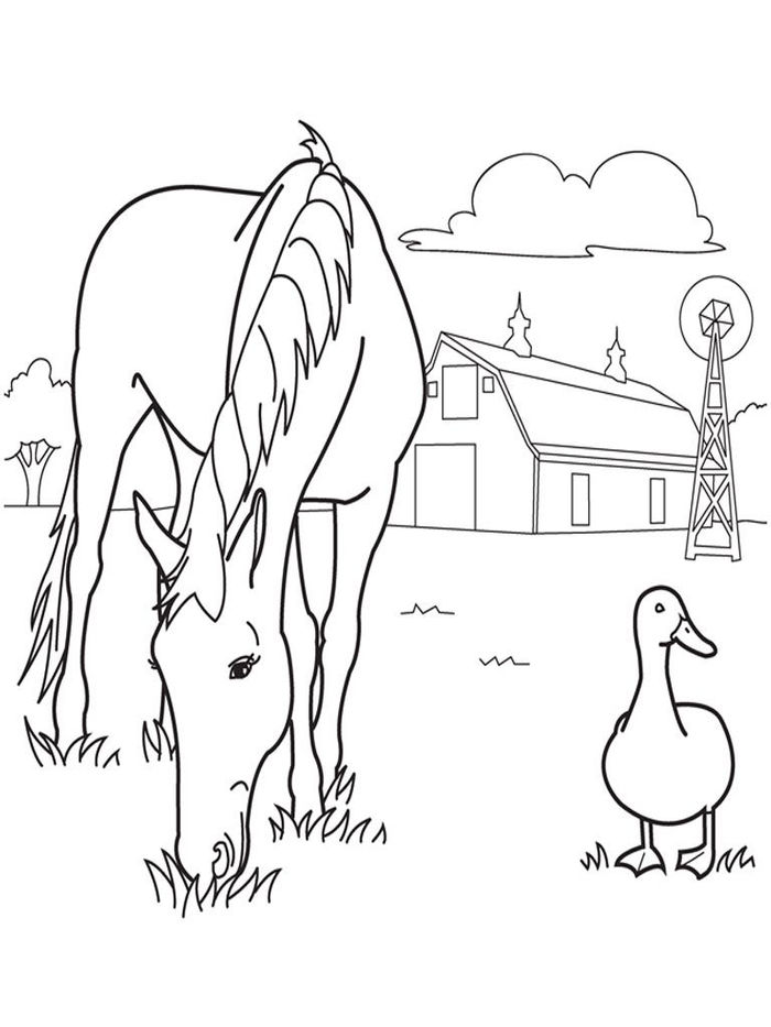 Farm Animal Coloring Pages For Kids
