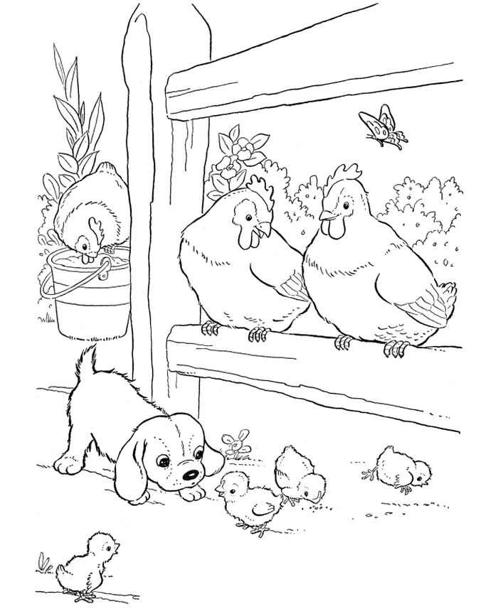 Farm Animal Coloring Pages Head