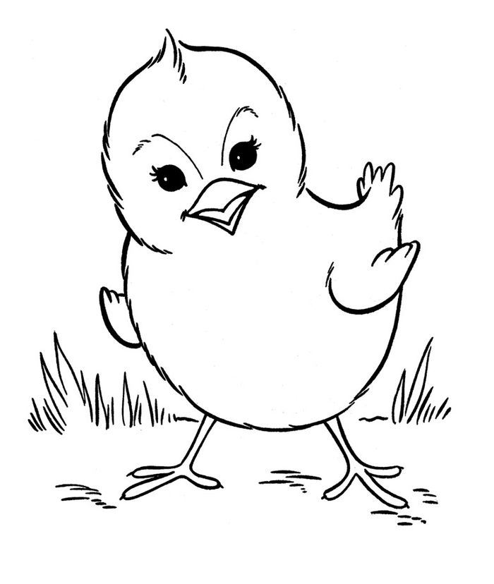 Farm Animal Coloring Pages That Are Hard