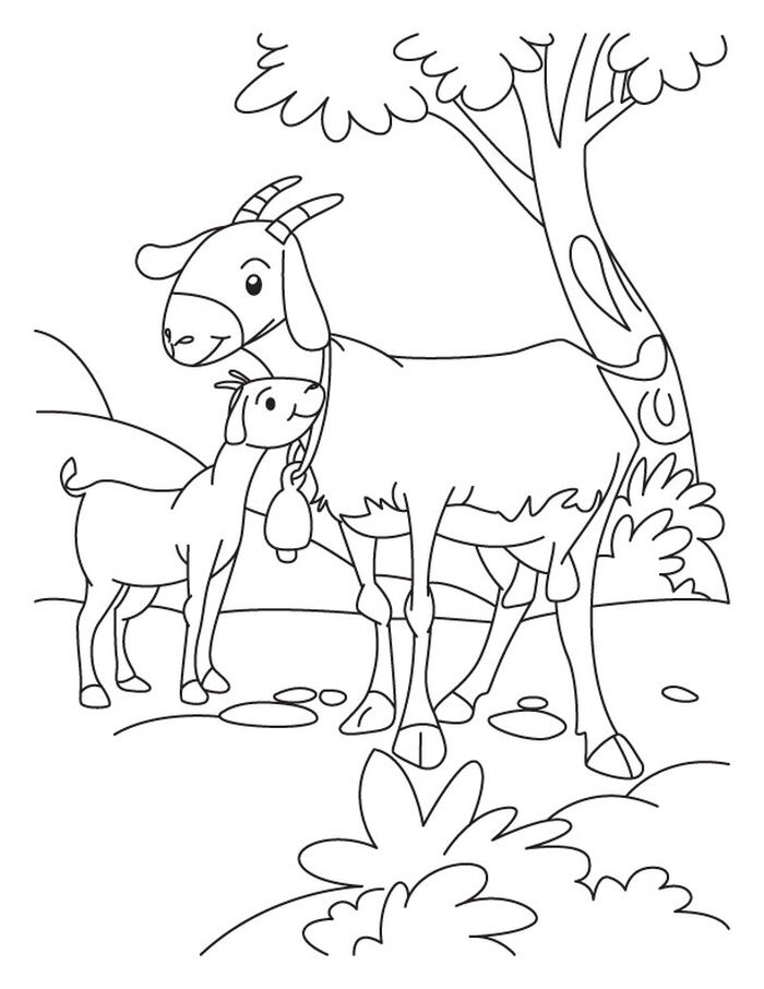 Farm Animal Coloring Pages To Print