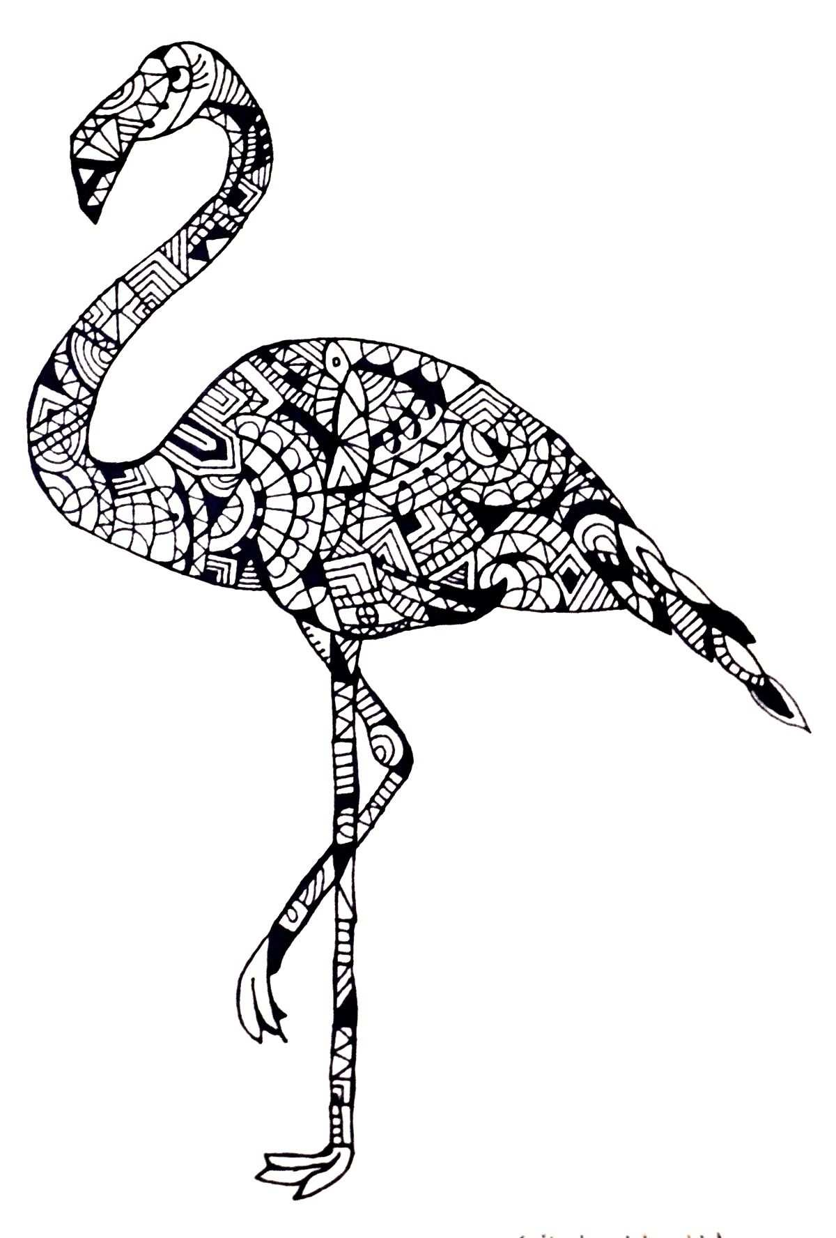 Flamingo Lps Coloring Pages