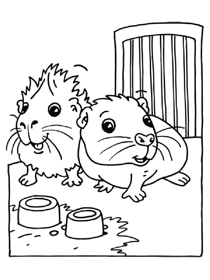 Hamster Coloring Pages Printable Momjunction