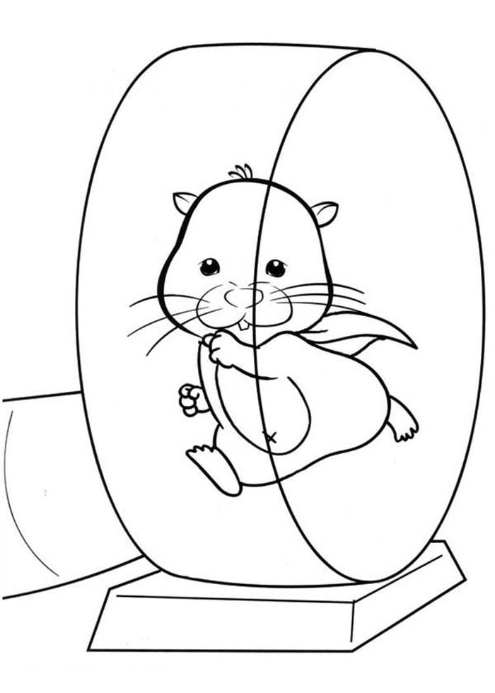 Hamster In Wheel Printable Coloring Pages