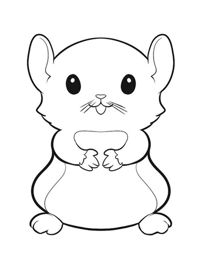 Hamster Printable Coloring Pages Small
