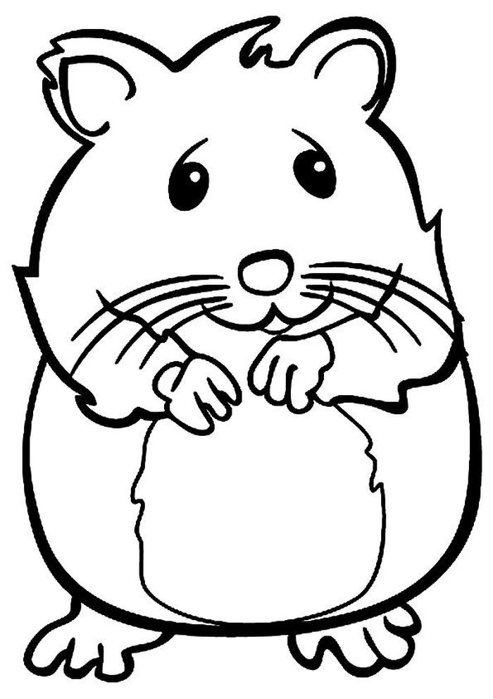 Small Hamster Coloring Pages
