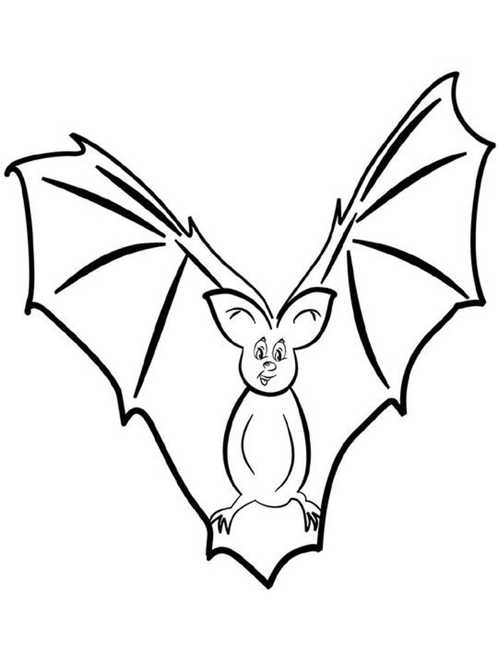 Tx State Mammal Coloring Pages Bat