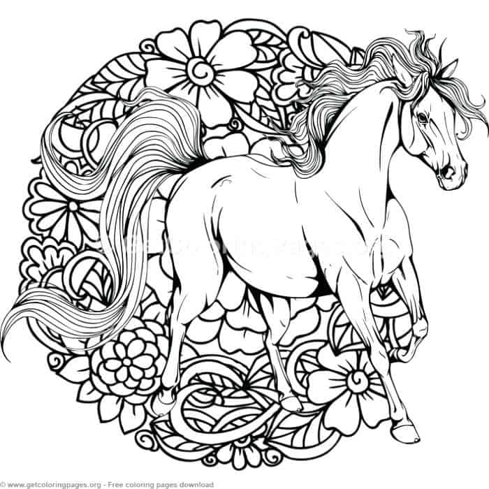 Adult Coloring Pages Horse