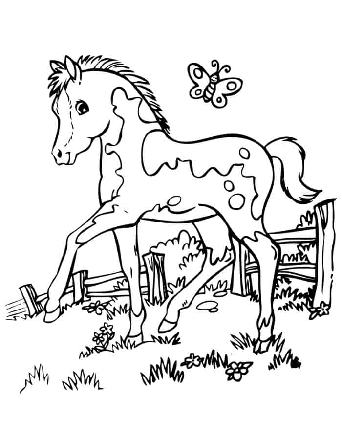 Anime Horse Coloring Pages