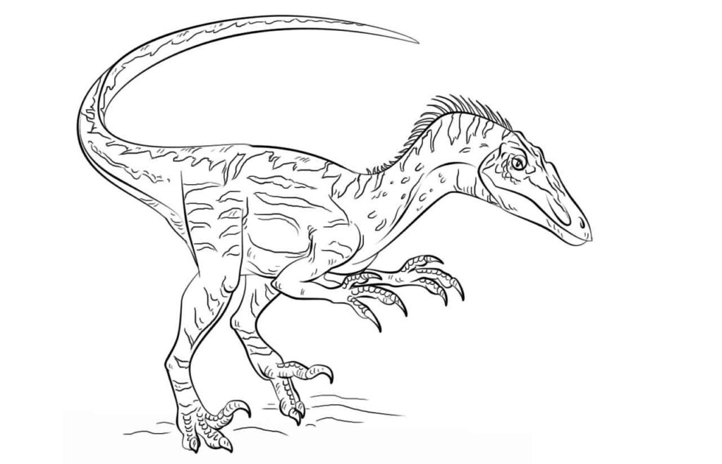 Free Jurassic World Coloring Pages
