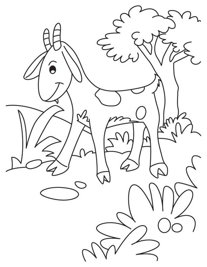 Goat Coloring Pages Free