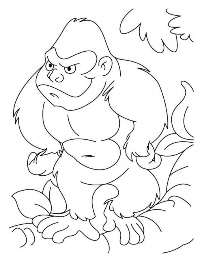 Printable Animal Coloring Pages Gorilla