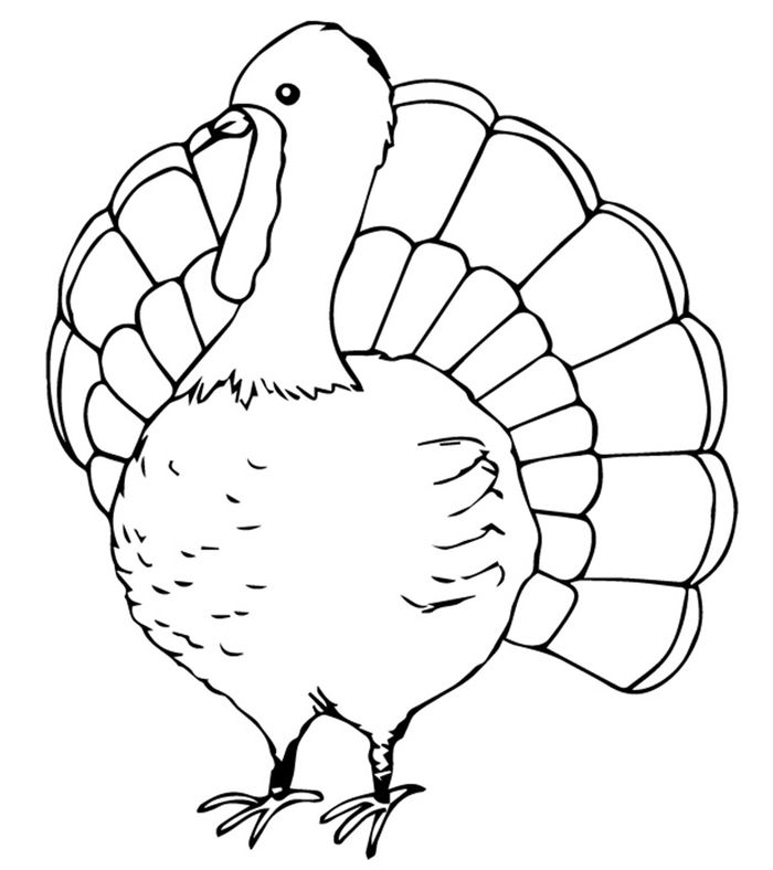 Adult Turkey Coloring Pages