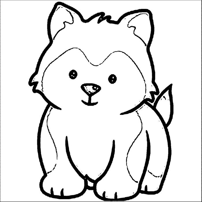 Baby Siberian Husky Coloring Pages