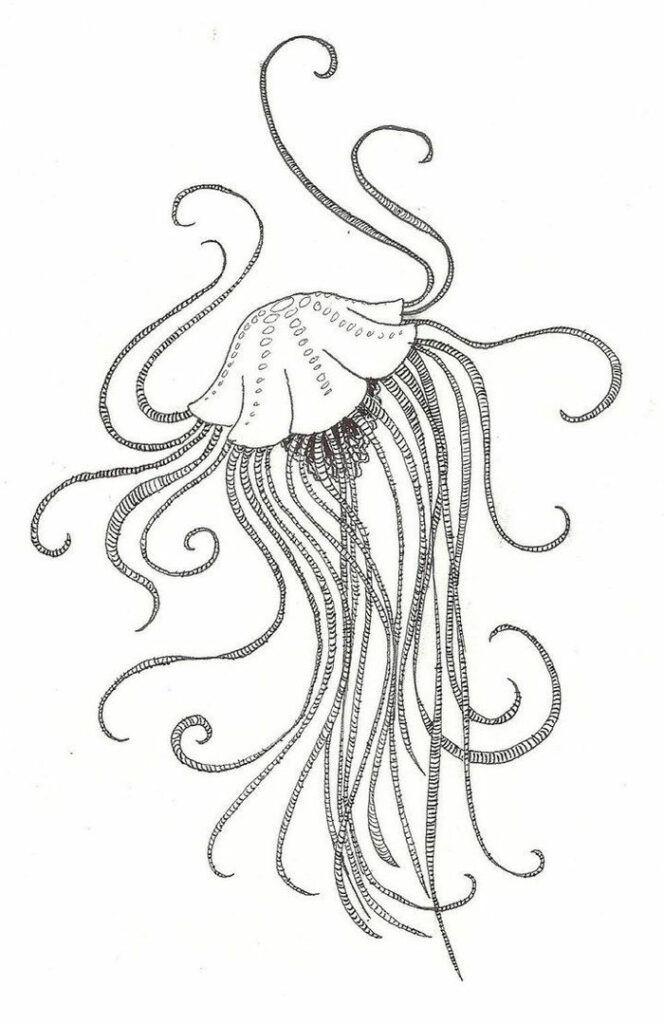 Free Adult Coloring Pages Jellyfish