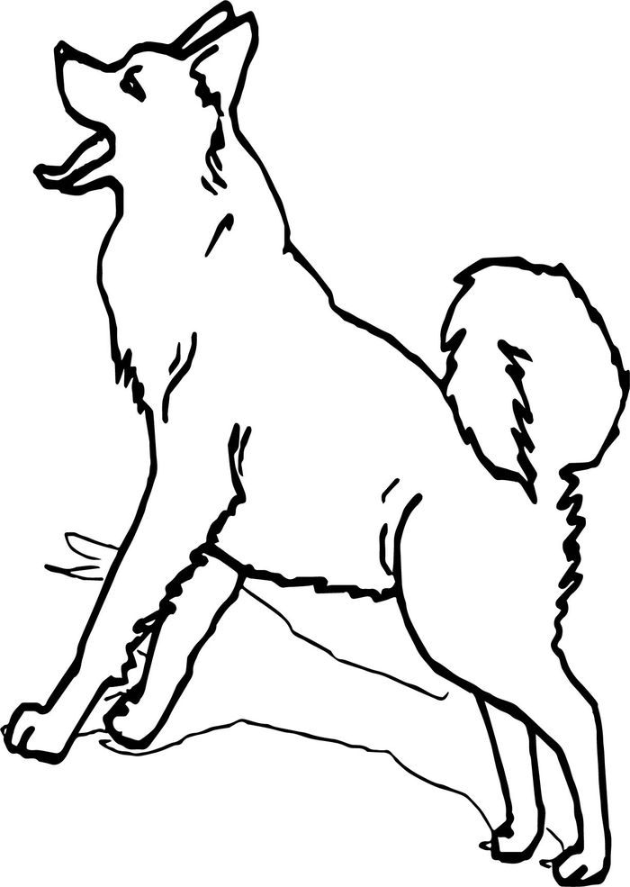 Husky Sled Dogs Coloring Pages